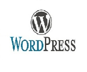 5 Pages Word Press Website
