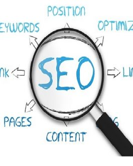 Complete Website SEO